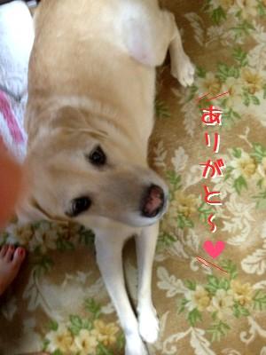 blog1_20130912223705cba.jpg