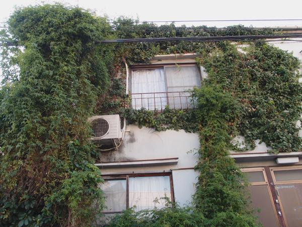 四谷の緑屋敷