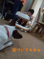 20131021013828bbb.jpg