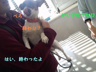 20131125004656193.jpg