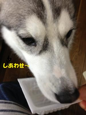IMG_4688_convert_20130714222437.jpg