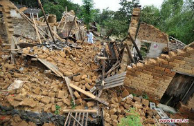 damage-caused-by-ty-trami.jpg
