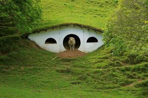 hobbit-underground-house.jpg