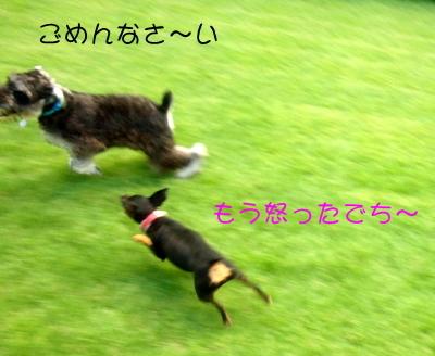 blog_import_51df6b9b329f1.jpg