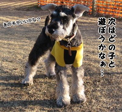 blog_import_51df705fef472.jpg
