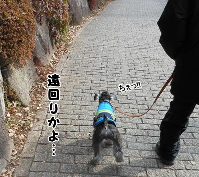 blog_import_51df70961d943.jpg