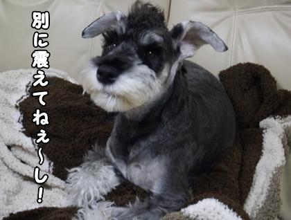 blog_import_51df7506cba72.jpg