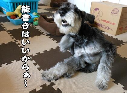 blog_import_51df763e2adaf.jpg