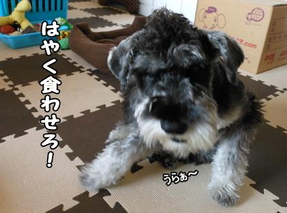 blog_import_51df763f8dd86.jpg