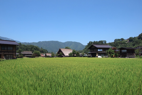 20130814_historic_villages_of_shirakawago-64.jpg