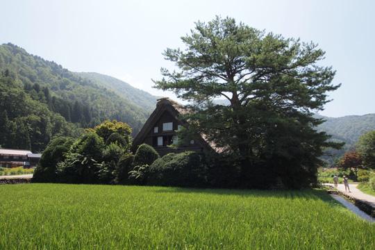 20130814_historic_villages_of_shirakawago-66.jpg