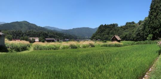 20130814_historic_villages_of_shirakawago-88.jpg