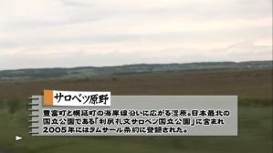 cyocue_syoubu_01_06.jpg