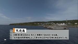 cyocue_syoubu_01_21.jpg