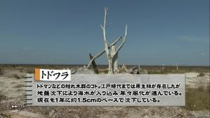 cyocue_syoubu_01_45.jpg