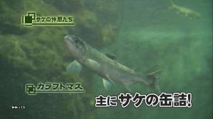 cyocue_syoubu_01_48.jpg