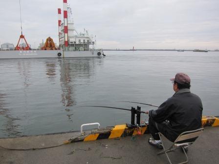 6月16日 館鼻岸壁釣り テクビイカ