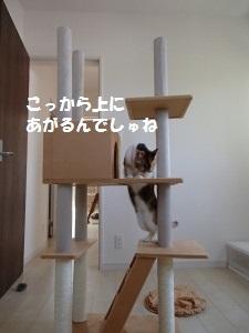20130505_4.jpg