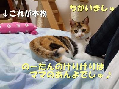 20130530_93.jpg