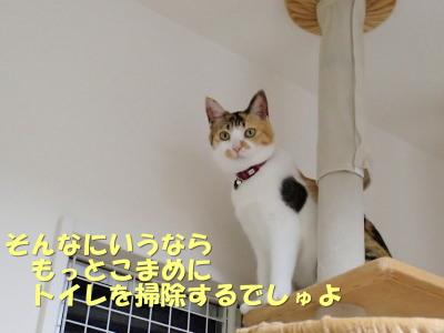 20130606_62.jpg