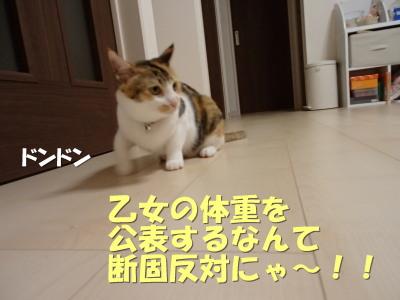 20130612_60.jpg