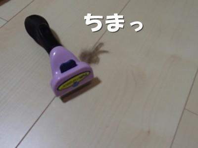 20130614_19.jpg