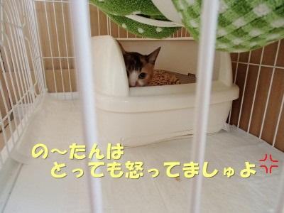 20130622_01.jpg