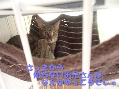 20130622_06.jpg