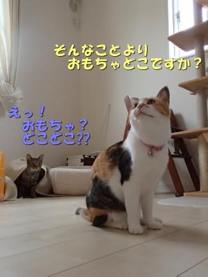 20130704_29.jpg