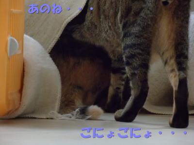 20130704_34.jpg