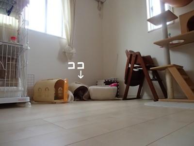 20130704_40.jpg