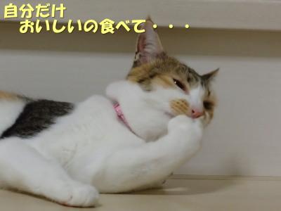20130709_92.jpg