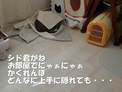20130713_295.jpg