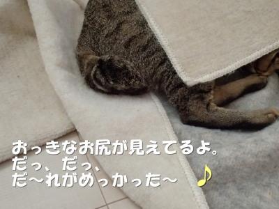 20130713_296.jpg
