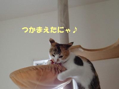 20130731_47.jpg