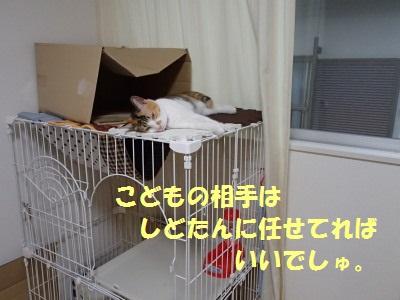 20130803_42.jpg