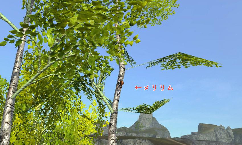 20130516161144f1e.jpg