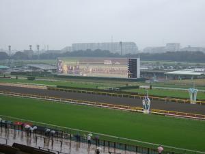 東京競馬場 雨