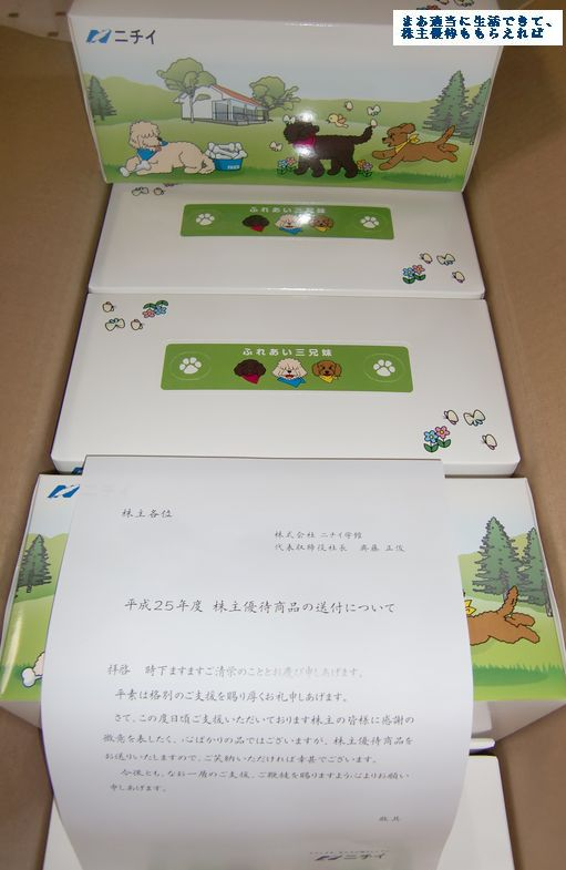 nichii-tissyu01_201303.jpg