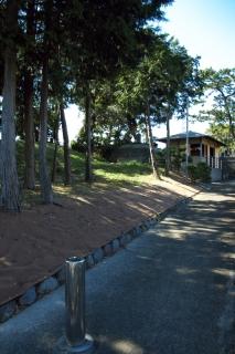 平塚・医王寺の墓地の砂丘