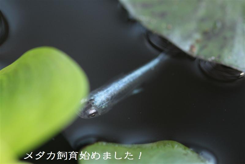 IMG_8901.jpg
