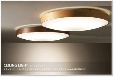 header_ceilinglight.jpg