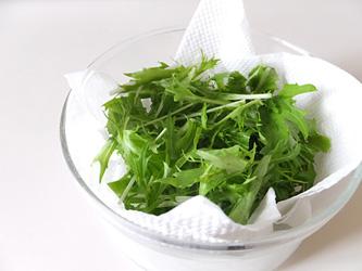 水菜の保存