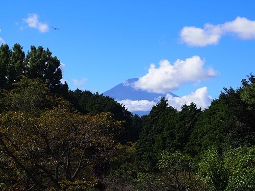 chichibu-20131006-11s.jpg