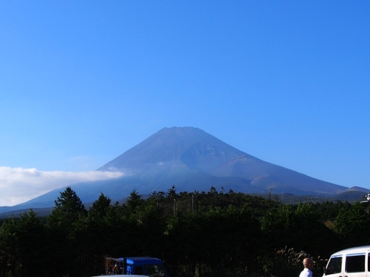 tanuki-20130918-08s.jpg