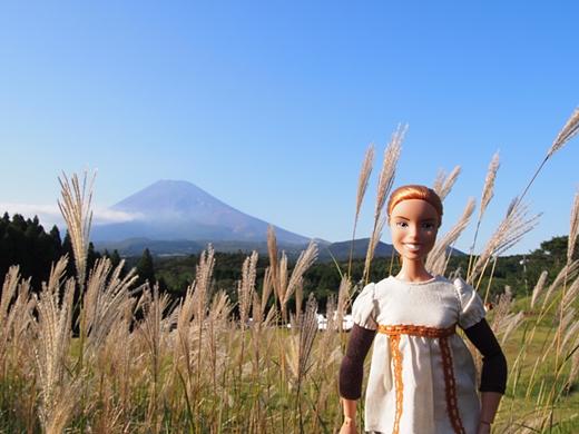 tanuki-20130918-11s.jpg