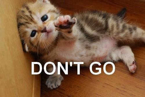 Don\'t go.jpg