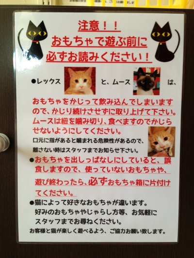 fc2blog_20130917205035b74.jpg