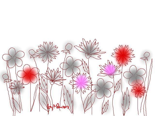花々2013-1