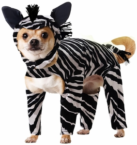 animal-planet-zebra-dog-costume-x-small-2.jpg
